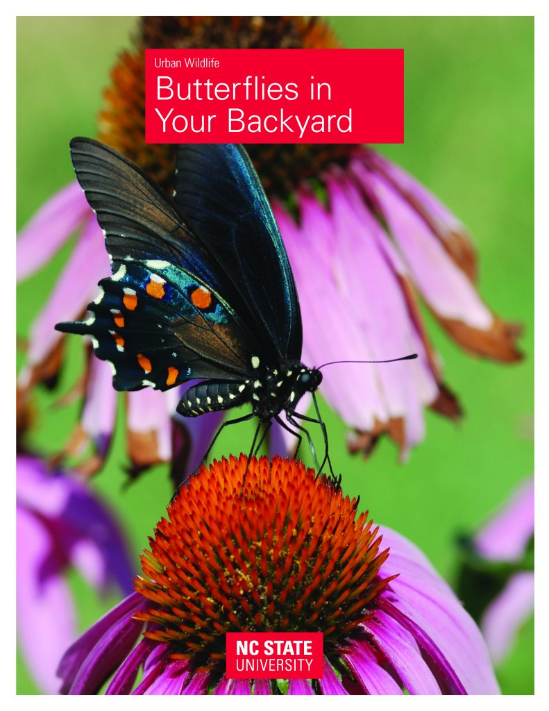 "Cover of the ""Butterflies in your backyard"" publication from NC State Extension, which features a black butterfly on a purple-and-red flower"