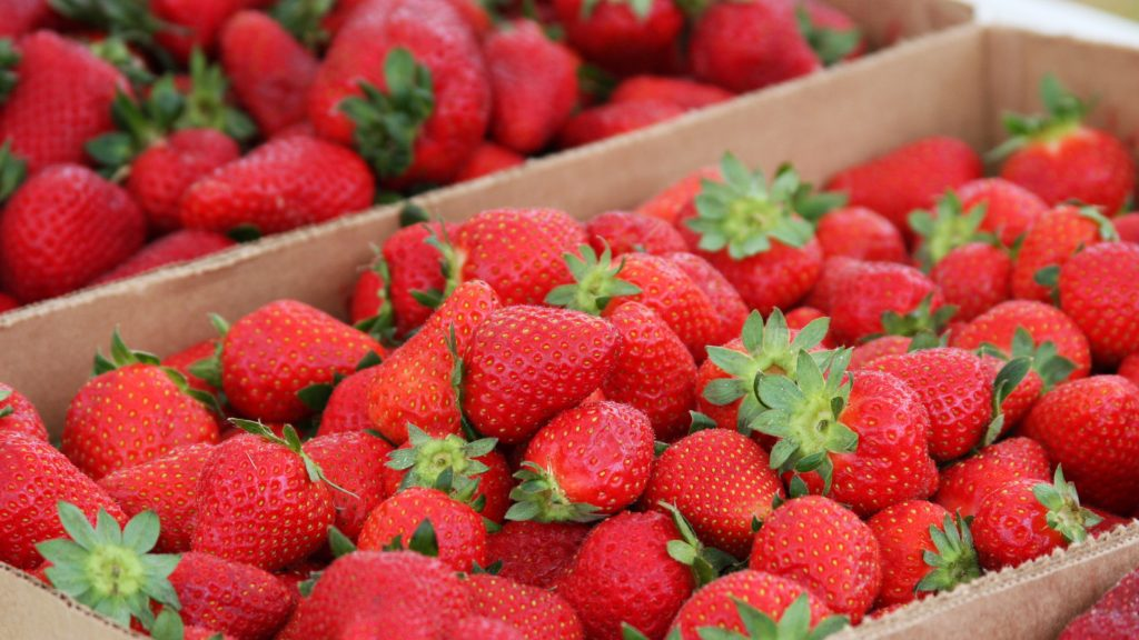 Fresh strawberries in boxes at a farmers market