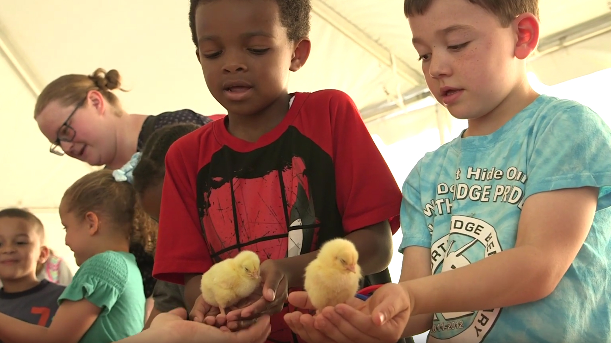 Two young boys are holding yellow baby chicks at a farm education event by NC State University.