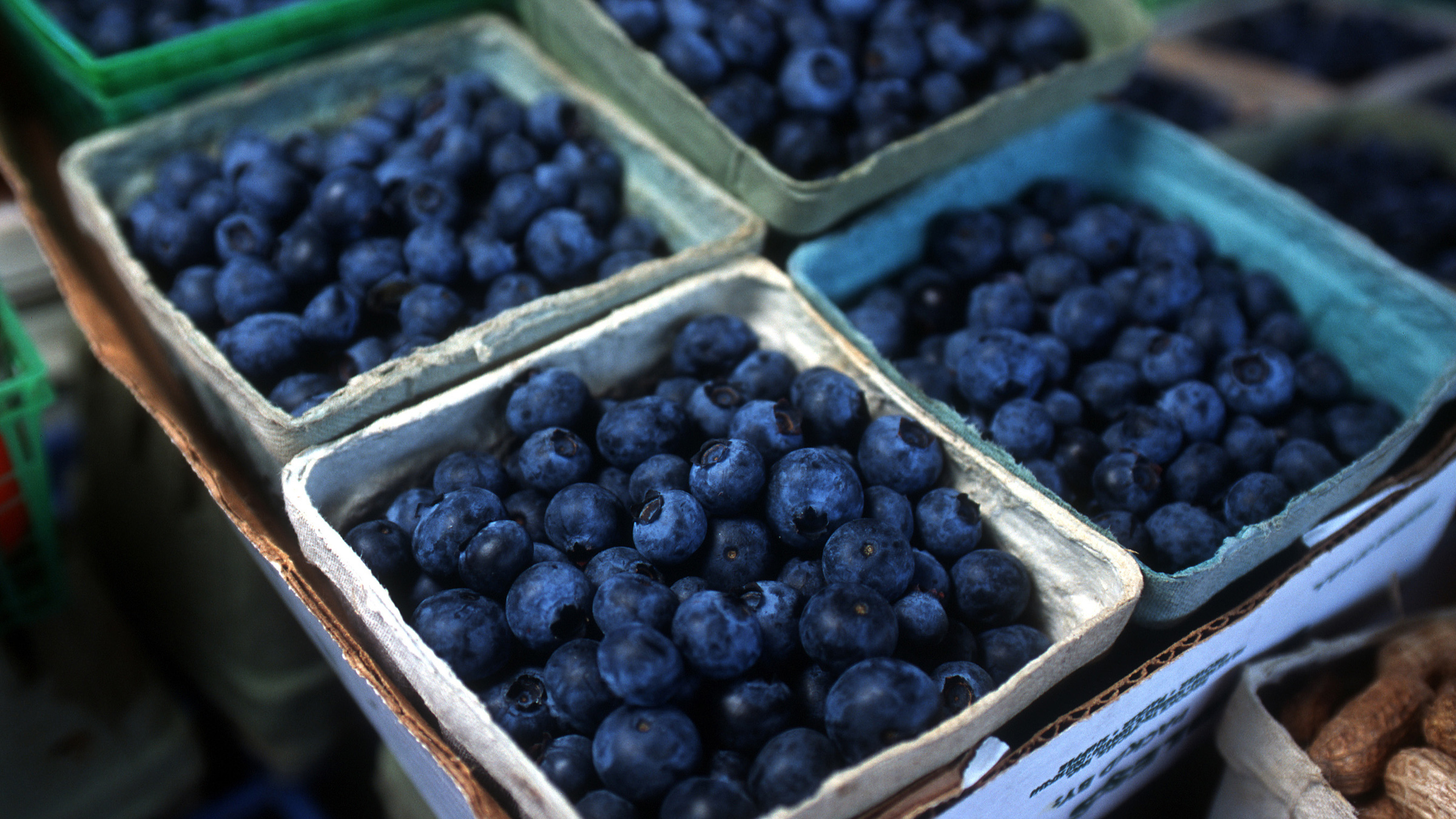 Close-up of individual containers of fresh blueberries on a table at a local farmers market