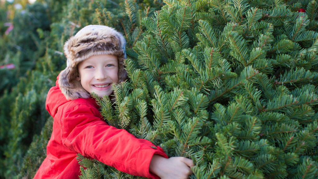 A young smiling boy in a red jacket is hugging a Christmas tree at a Christmas tree stand