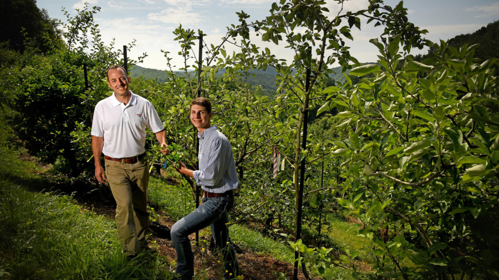 An NC State Extension expert is standing with a student in front of apple trees at an orchard in North Carolina.