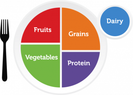 USDA My Plate program icon with the five main food groups listed: fruits, vegetables, grains, protein and dairy.